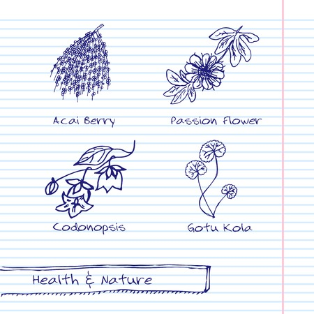 ayurveda: Handdrawn Illustration - Health and Nature Set Illustration
