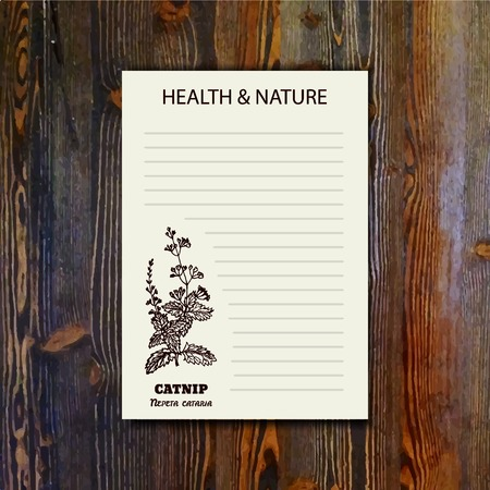 catnip: Health and Nature Collection