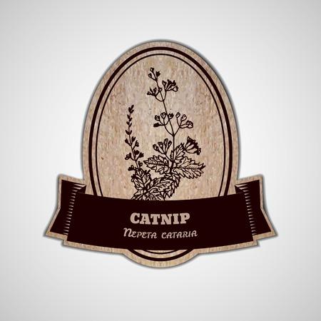 nepeta cataria: Salute e Natura Collection. Modello Badge con un'erba su cartone sfondo. Catnip - Nepeta cataria