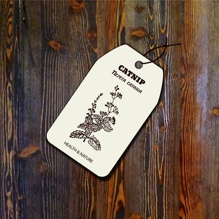 nepeta cataria: Salute e Natura Collection. Template tag con un erba su sfondo di legno. Catnip - Nepeta cataria Vettoriali