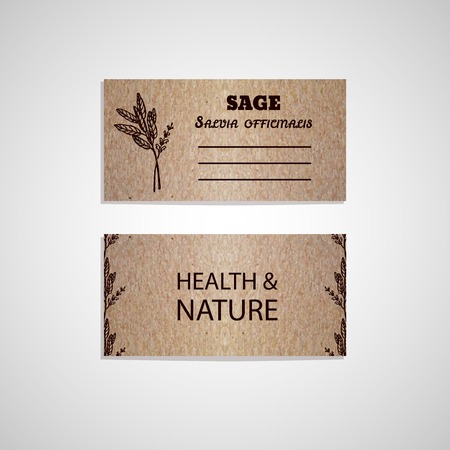 salvia: Health and Nature Collection. Cardboard business card template with a herb.  Sage - Salvia officinalis