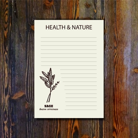officinalis: Health and Nature Collection. Banner template with a herb on wooden background. Sage - Salvia officinalis
