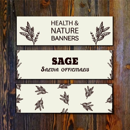 officinalis: Health and Nature Collection. Collection of banners with herbal elements on wooden background. Sage - Salvia officinalis