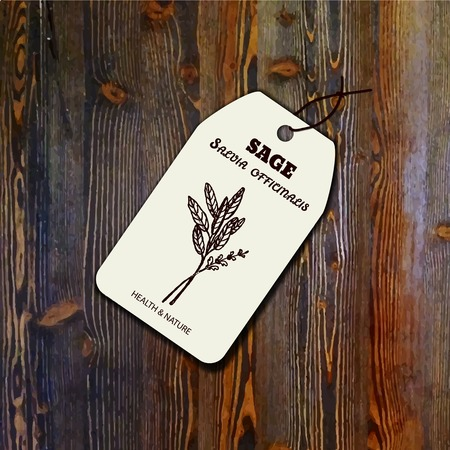 salvia: Health and Nature Collection. Tag template with a herb on wood background. Sage - Salvia officinalis Illustration