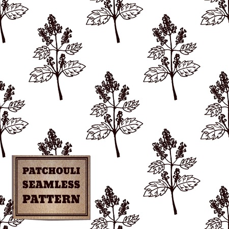 ayurveda: Health and Nature Collection. Seamless pattern with a herb and cardboard card.  Patchouli  - Pogostemon cablin