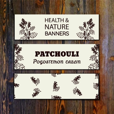 insect repellent: Health and Nature Collection. Collection of banners with herbal elements on wooden background. Patchouli  - Pogostemon cablin Illustration