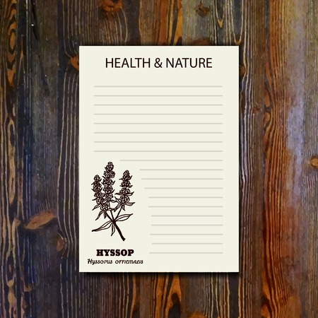 officinalis: Health and Nature Collection. Banner template with a herb on wooden background. Hyssop - Hyssopus officinalis