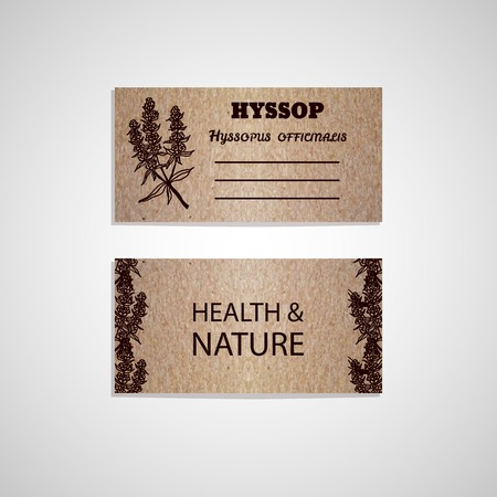 officinalis: Health and Nature Collection. Cardboard business card template with a herb.  Hyssop - Hyssopus officinalis
