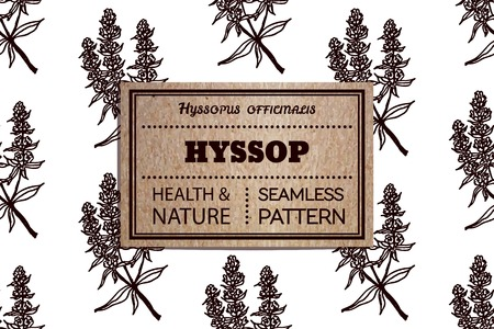 officinalis: Health and Nature Collection. Seamless pattern with a herb and cardboard card. Hyssop - Hyssopus officinalis Illustration