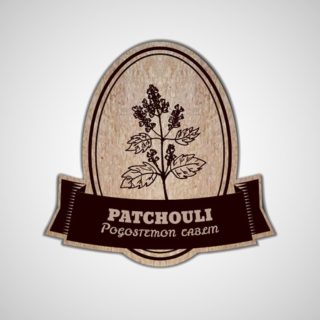 insect repellent: Health and Nature Collection. Badge template with a herb on cardboard background.  Patchouli  - Pogostemon cablin