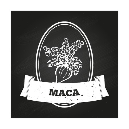 maca root: Health and Nature Collection. Badge template with a herb on chalkboard background. Maca Illustration