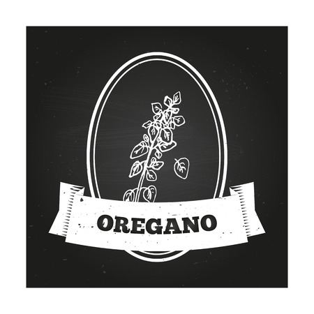 origanum: Health and Nature Collection. Badge template with a herb on chalkboard background. Oregano