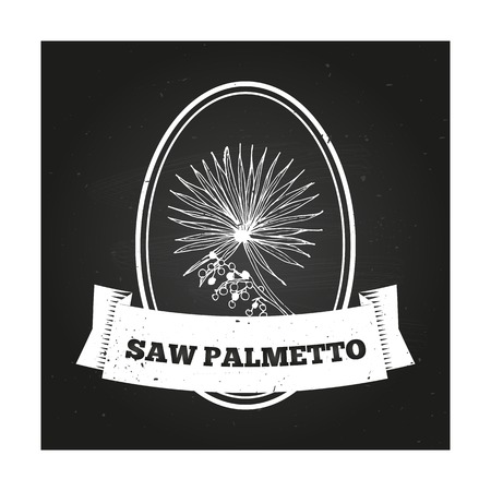 palmetto: Health and Nature Collection. Badge template with a herb on chalkboard background. Saw palmetto Illustration