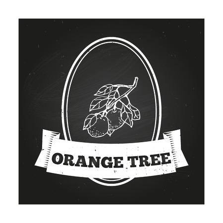 orange tree: Health and Nature Collection. Badge template with a herb on chalkboard background. Orange tree