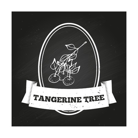 tangerine: Health and Nature Collection. Badge template with a herb on chalkboard background. Tangerine Tree Illustration