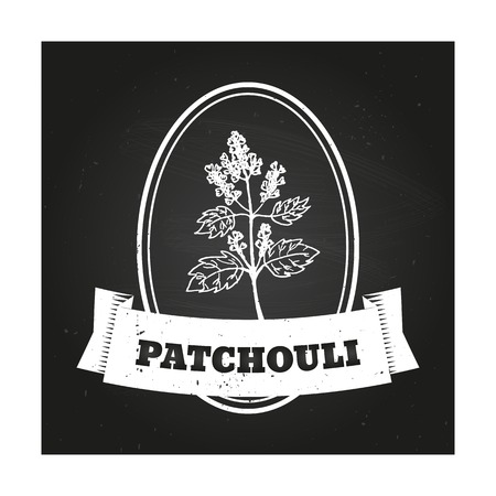 insect repellent: Health and Nature Collection. Badge template with a herb on chalkboard background. Patchouli Illustration
