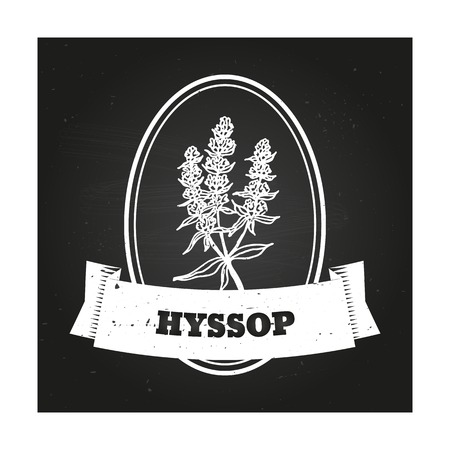 officinalis: Health and Nature Collection. Badge template with a herb on chalkboard background. Hyssop