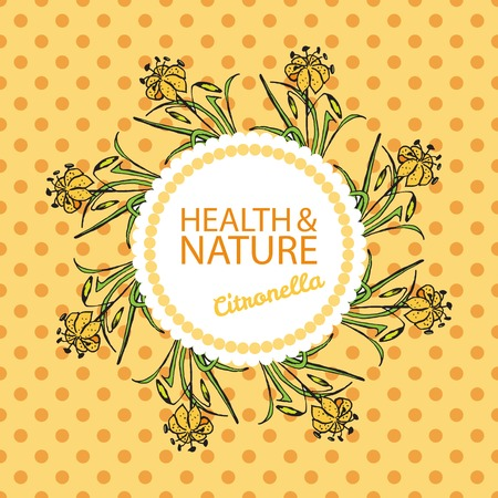 Health and Nature Collection.  Badge template with a herb on spotted seamless background. Citronella - Cymbopogon citratus Vector