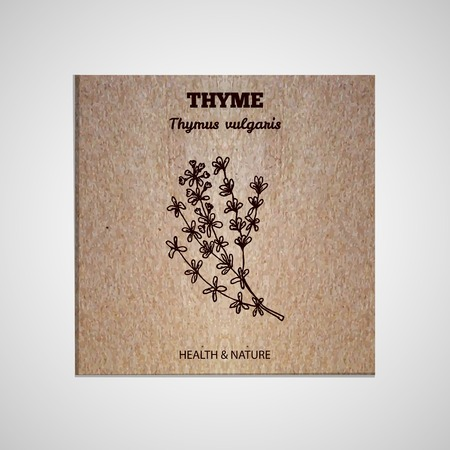 thymus: Health and Nature Supplements Collection. Banner template with a herb on cardboard background. Thyme - Thymus vulgaris