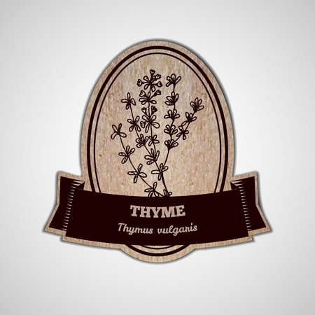 thymus: Health and Nature Supplements Collection.  Badge template with a herb on cardboard background. Thyme - Thymus vulgaris