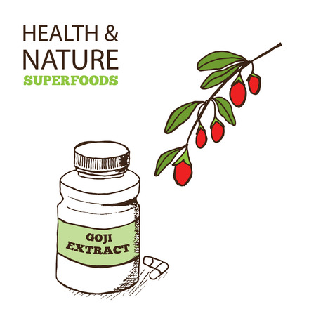 lycium: Health and Nature Superfoods Collection.  Goji Berries - Lycium barbarum