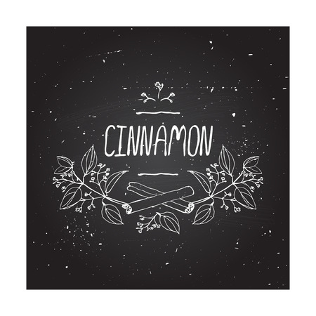 Herbs and Spices Collection - Cinnamon. Handdrawn Vignette on chalkboard background. Suitable for ads, signboards, packaging and identity designs Vector