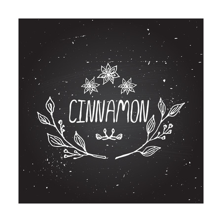 Herbs and Spices Collection - Cinnamon. Hand-sketched typographic element on chalkboard background. Suitable for ads, signboards, packaging and identity designs Vector