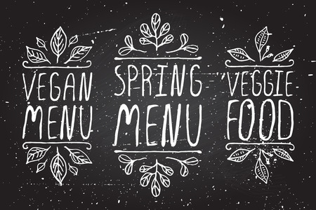 speisekarte: Hand-skizziert typografische Elemente auf Tafel Hintergrund. Vegan-Men�. Fr�hlingsmen�. Vegetarisches Essen. Restaurant-Etiketten. Geeignet f�r Anzeigen, Schilder, Men� und Web-Banner-Designs