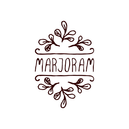 Herbs and Spices Collection - Marjoram. Hand-sketched typographic element. Suitable for ads, signboards, packaging and identity designs Vector