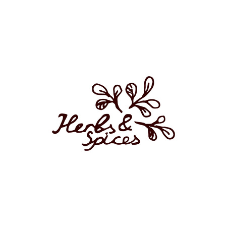 Herbs and Spices Collection - Marjoram. Hand-sketched typographic element. Suitable for ads, signboards, packaging, logo and identity designs Vector