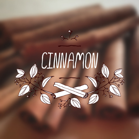 herbs: Herbs and Spices Collection - Cinnamon.  Hand-sketched typographic element on blurred background. Suitable for ads, signboards, packaging and identity designs