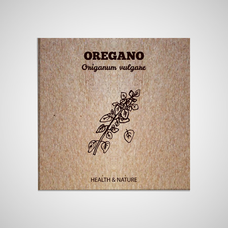 oregano: Herbs and Spices Collection - Oregano.  Hand-sketched herbal element on cardboard background. Suitable for ads, signboards, packaging and identity designs Illustration