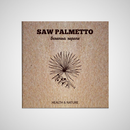 palmetto: Herbs and Spices Collection -  Saw palmetto.  Hand-sketched herbal element on cardboard background. Suitable for ads, signboards, packaging and identity designs