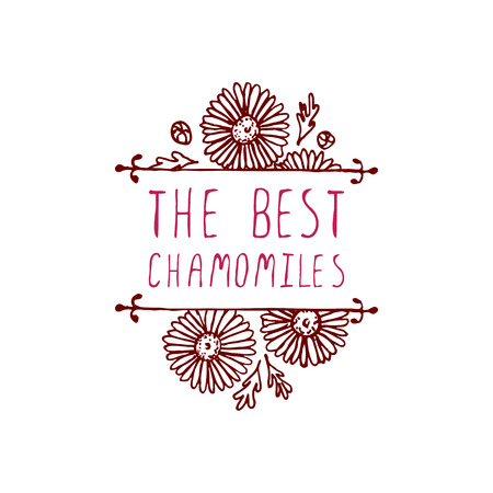 chamomiles: The best chamomiles. Handsketched typographic element with chamomiles.  Floral label.  Suitable for ads, signboards, identity and wedding designs