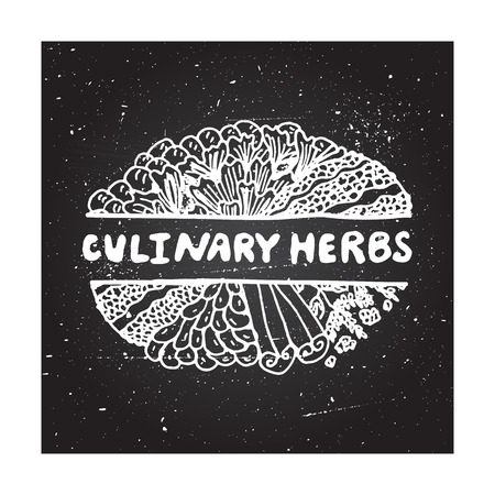 culinary: Culinary herbs - zentangle element on chalkboard background Illustration