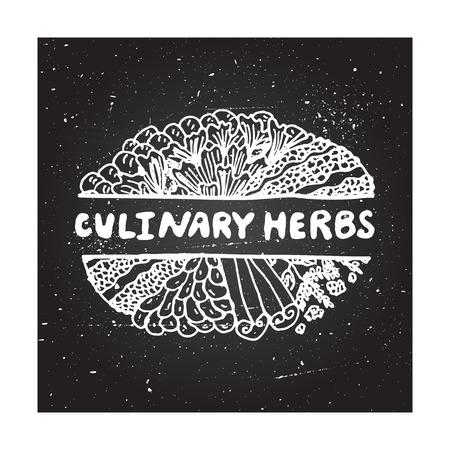 culinaire: Herbes culinaires - �l�ment zentangle sur fond tableau Illustration