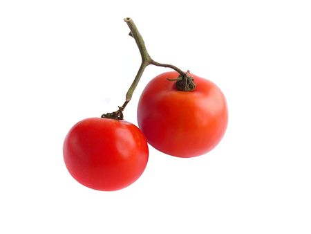 isolated tomatoes close up photo
