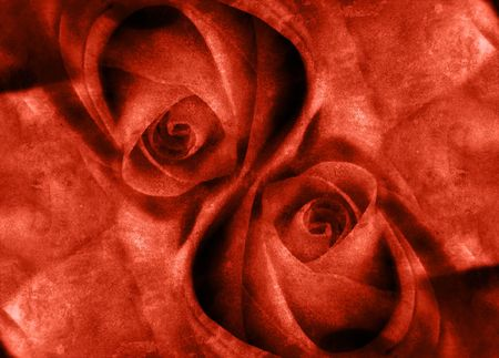 Computer designed grunge background - two roses Stock Photo