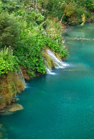 Beautiful landscape of a green lake Stock Photo - 8720574