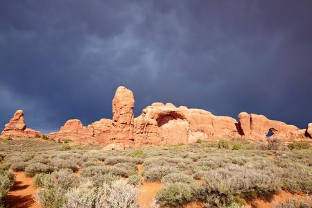 Desert after the Storm, Arches National Park, Utah, USA photo