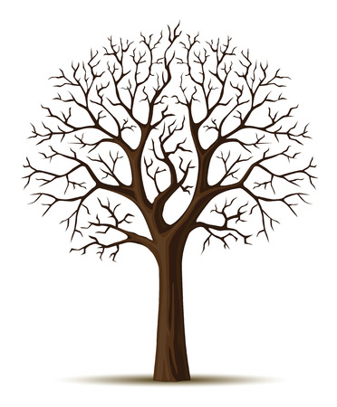 vector silhouette of tree branches cron isolated on the white background Stock Vector - 2782230
