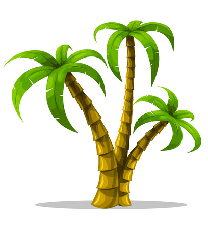 vector tropical palm trees isolated on white background illustration Vector
