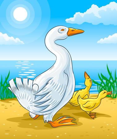 vector illustration of goose mother with gosling kids on river coast Illustration