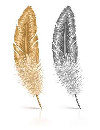 fuzz: feather isolated on white background - vector illustration