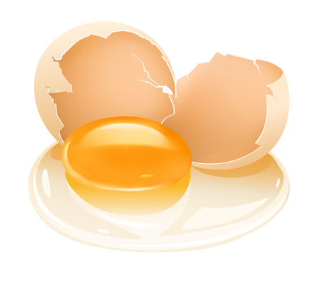 yolk: cracked hens egg food with yolk and albumen - vector illustration Illustration