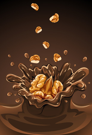 chocolate splash: walnut fruit falling into the chocolate with splash - vector illustration