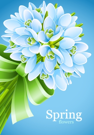 snowdrop: spring snowdrop flowers with green ribbon on blue background