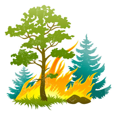 wildfire disaster with burning forest tree and fir trees. Transparent objects used for shadows and lights drawing Vector