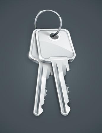 sheaf: Gavilla de dos llaves de plata. Los objetos transparentes utilizados para las sombras y las luces de dibujo Vectores