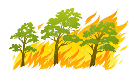 fire wood: burning forest trees in fire flames - natural disaster concept, vector illustration isolated on white background.